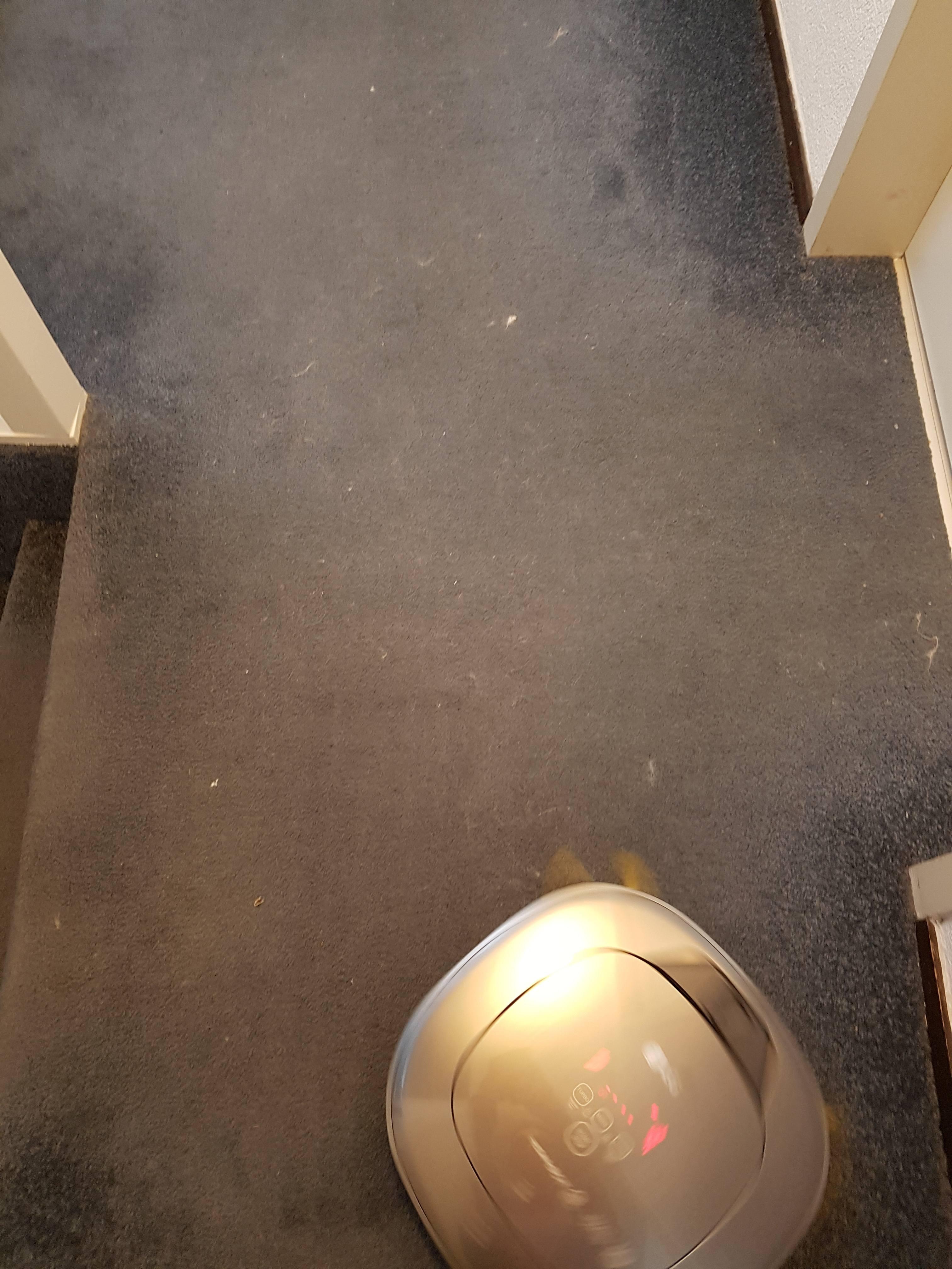 Stukje vloerbedekking bij aanvang schoonmaken