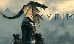 The Elder Scrolls V: Skyrim - pc