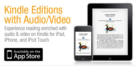 Amazon Kindle-app iPad audio video