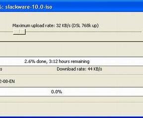 BitTorrent 3.9.0 beta (resized)