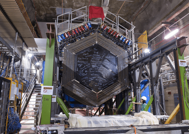 Minerva neutrinodetector