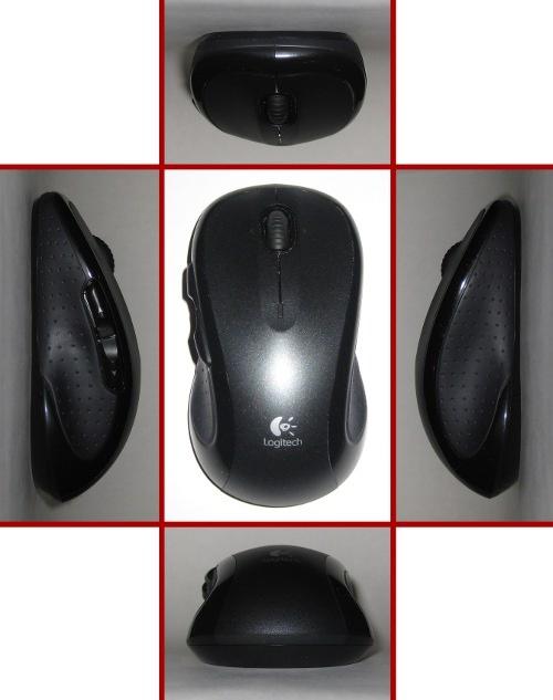 Verschillende aanzichten van de muis