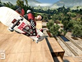 Skate 3 Danny Ways Hawaiian Dream