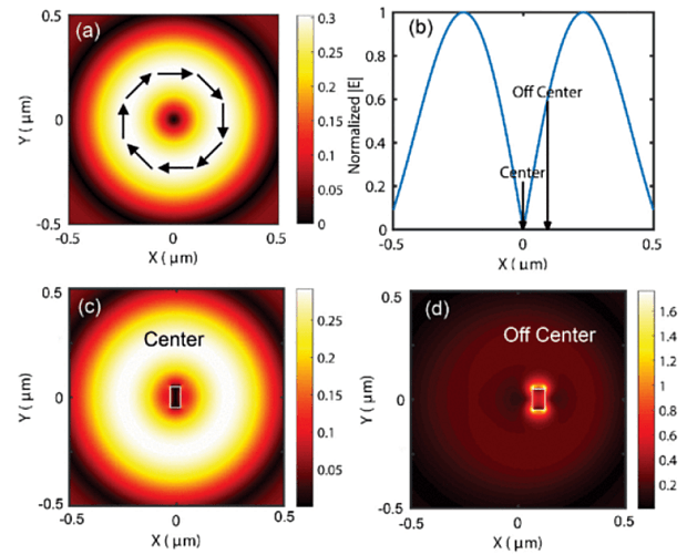 TU Delft Accurate Feeding of Nanoantenna by Singular Optics for Nanoscale Translational and Rotational Displacement Sensing
