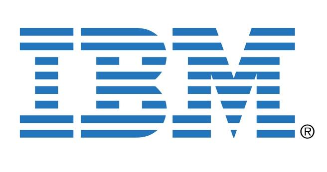 IBM 2GB Memory Module