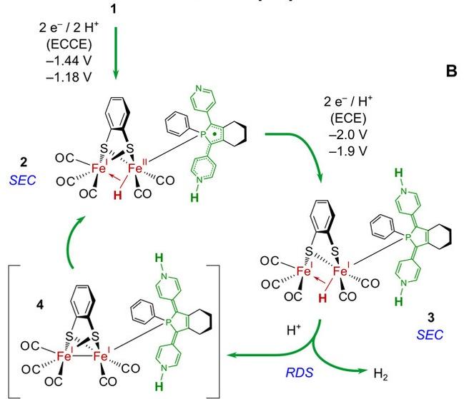 mechanisme voor protonreductie