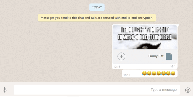 whatsapp web lek