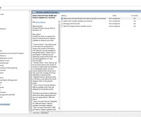 Windows 10 local group policies voor updates