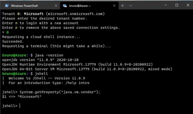 Microsoft Build OpenJDK