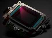 Canon EOS-1D Mark IV beeldsensor