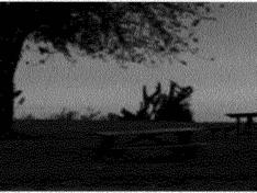zwart-wit foto fragment resultaat controlcenter Gray error diffusion