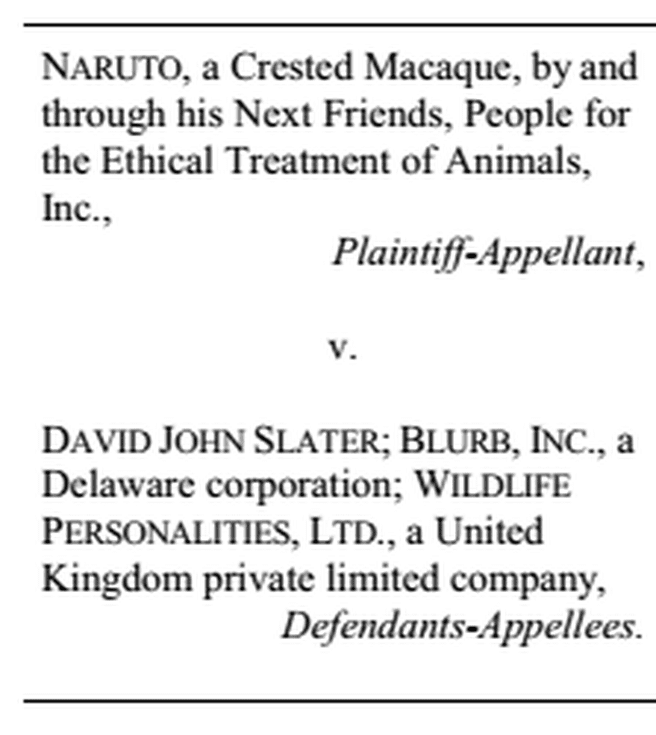Naruto-rechtszaak