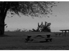 zwart-wit foto fragment bron