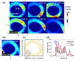 Ballistic and snake photon imaging for locating optical endomicroscopy fibres