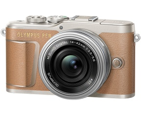 Olympus PEN E-PL9 + 14-42mm f/3.5-5.6 Bruin