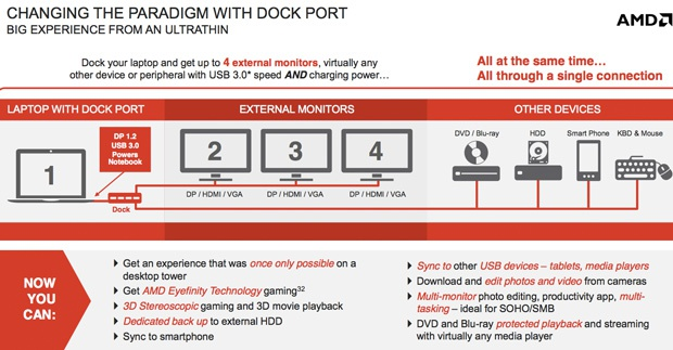 AMD Dock Port