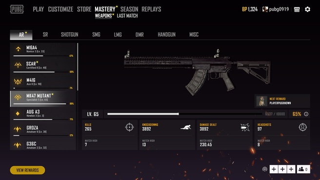 PUBG 1.0 update 28 - Weapon Mastery