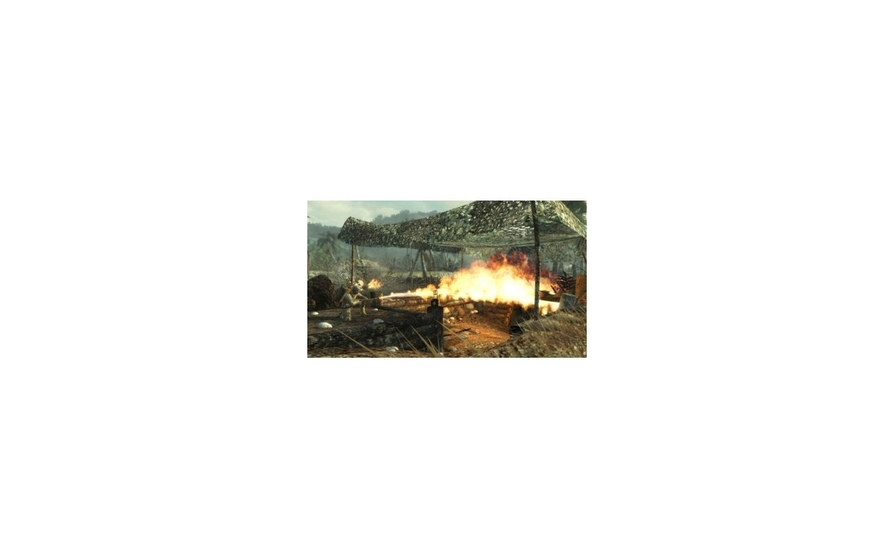 Call Of Duty - World At War, PC (Windows)