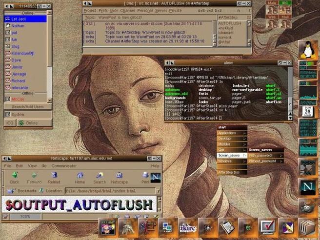 AfterStep - custom theme