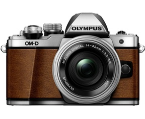 Olympus OM-D OM-D E-M10 Mark II Limited Edition + M.Zuiko DIGITAL 14‑42mm 1:3.5‑5.6 II R Bruin