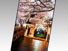 """Japan Display 5,4"""" 2560x1440 en 12,1 scherm 3840x2160"""