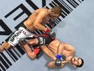 UFC 2010