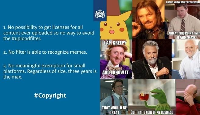 Artikel 13 visie NL