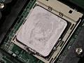 Apollo's besmeurde Opteron 244 processoren
