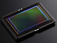 Canon EOS 6D sensor 200px