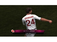 UEFA Euro 2012, PC (Windows)