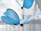 eMotionButterflies