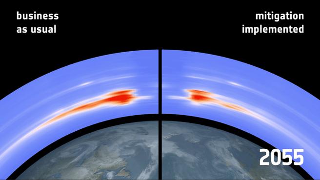 Future debris density at poles