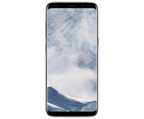 Samsung Galaxy S8+ Zilver