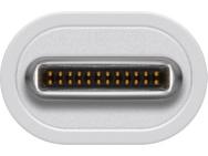 Wentronic USB-C/DVI