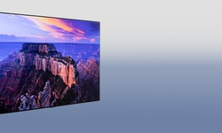 LG GX oled-tv Review