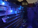 Fotosamples OnePlus 8 (Pro) nachtmodus