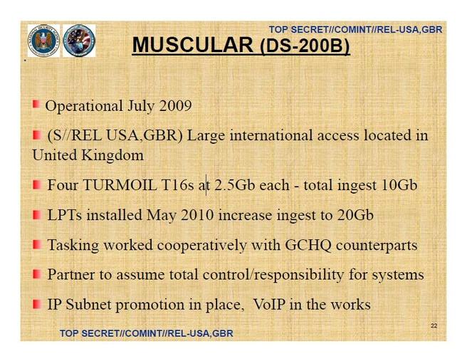NSA Muscular