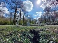 Fotosamples ultragroothoekcamera Galaxy A52