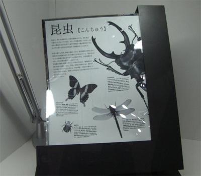 Sony e-paper 13,3inch