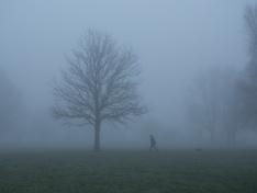Origineel van Foggy Walk