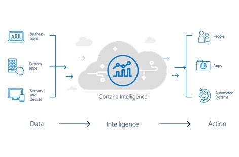 Microsoft Intelligence Suite