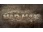 Goedkoopste Mad Max (2015), PlayStation 3