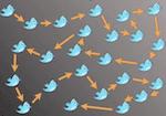 Twitter bittorrent
