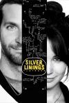 Poster voor Silver Linings Playbook