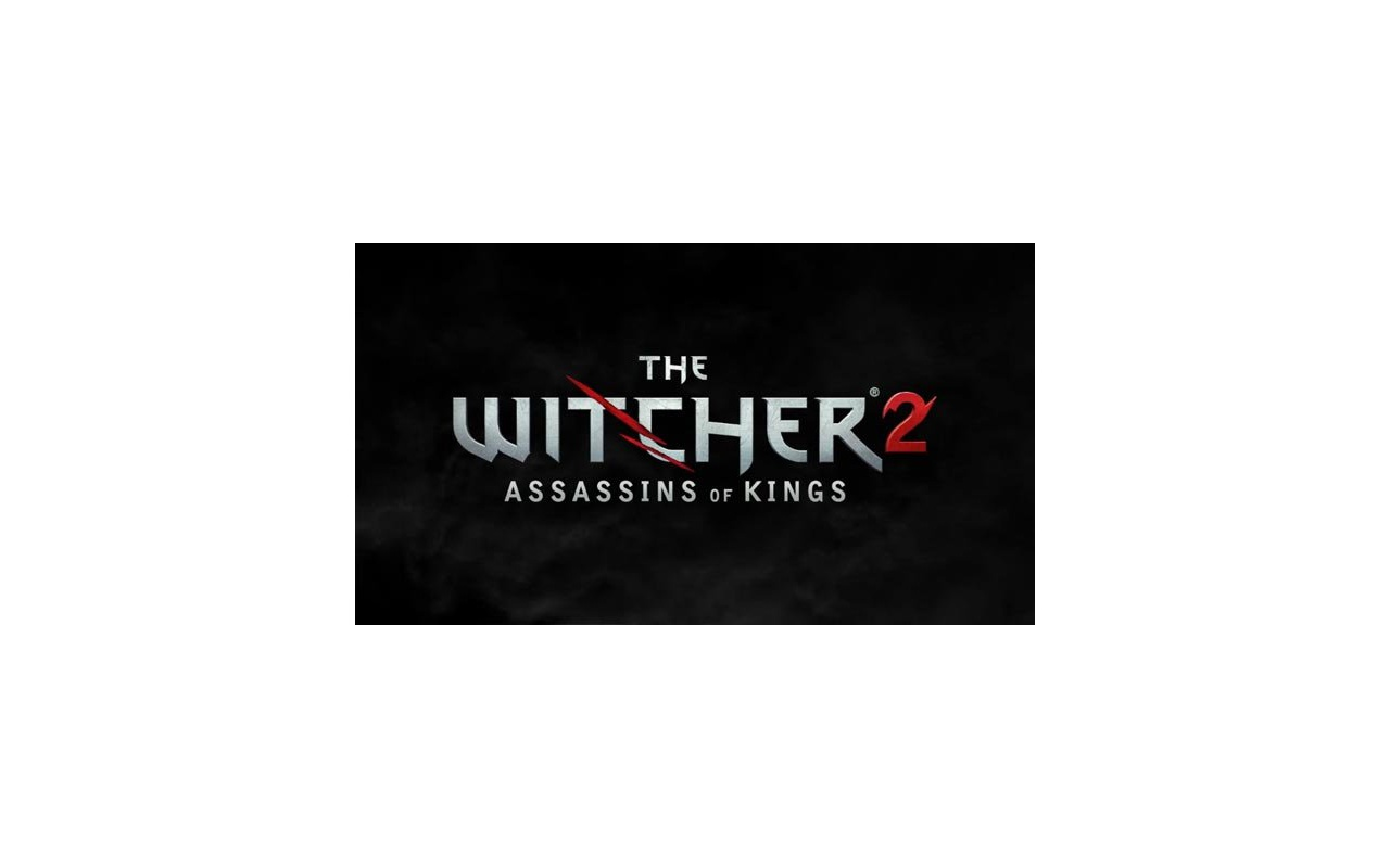 The Witcher 2: Assassins of Kings, PC