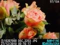 Nikon D7000 weergavestanden