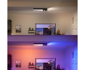 Signify Philips Hue Centris