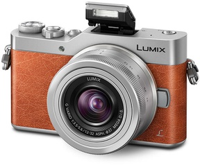 Panasonic Lumix DC-GX800 + 12-32mm f/3.5-5.6 Oranje