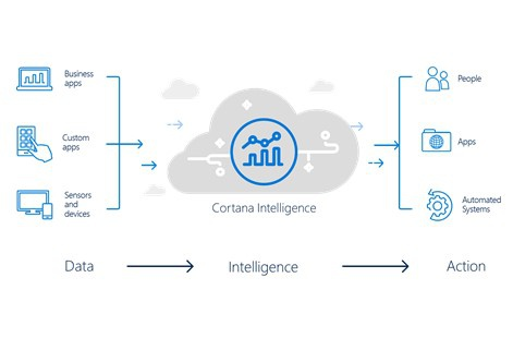 Microsoft Intelligence Suite