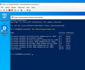 Windows 10 May 2020 Update, 20H1